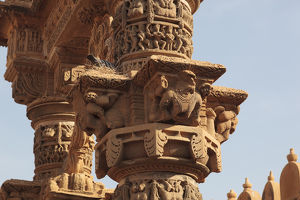 India, Rajasthan, Jaisalmer. Birds nest on ancient rock carving at the Jain Temple