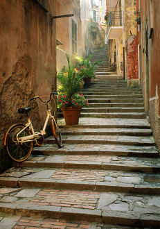 architecture/italy cinque terre monterosso bicycle uphill