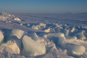 landscape of jumbled ice on the frozen Arctic ocean, off Herschel island and the