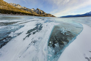 landscape/methane ice bubbles clear ice abraham lake near