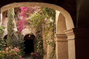 Mexico, Oaxaca Province, Oaxaca, courtyard of arches and bougainvillea flowers in