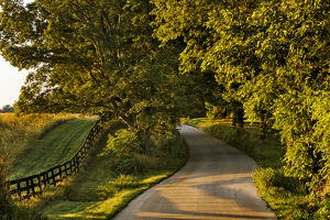 usa/kentucky/rural road fence sunrise oldham county kentucky