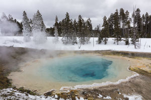 landscape/silex spring winter yellowstone national park