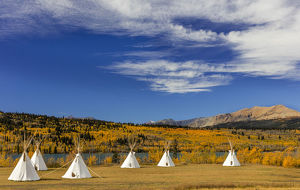 usa/tipis yellow mountain background chewing black