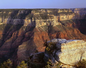 USA, Arizona, Grand Canyon National Park, North Rim, View across Roaring Springs
