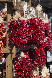 places/usa santa fe new mexico chile peppers hang