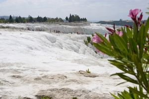 View of the travertine rocks with tourists and oleander, Pamukkale (ancient Hierapolis)