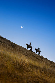 usa/wranglers riding horses hill moon backround blue