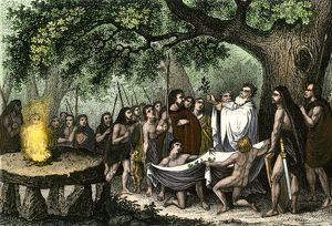 Druids collecting sacred mistletoe