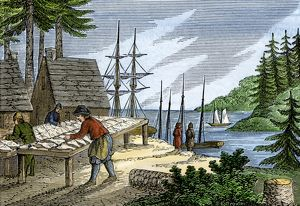 Drying and salting fish in colonial Maine