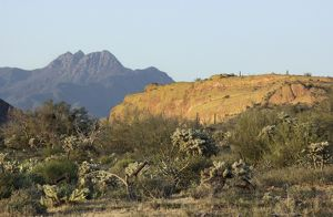 Four Peaks Wilderness in the mountains of central Arizona