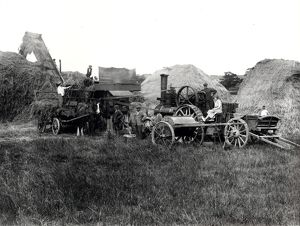 Steam threshing, 1931