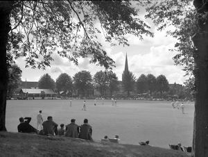 Summer's day scene of cricket in Priory Park, Chichester