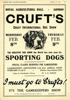 1939 Crufts advert