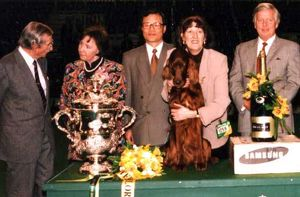 1995 Crufts Best in Show Winner