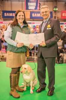 Crufts 2016 Gundog day