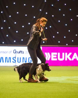 Heelwork to Musiv AC/DC Handler Irena IA¡tvankova and border collie, Mystic Layla
