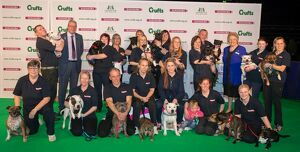 Photo Call The kennel Club handing over a cheque to the East Anglian Staffordshire