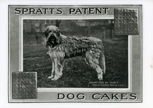 Spratts Patent Dog Cakes