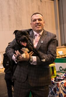Staffordshire Bull Terrier and handler