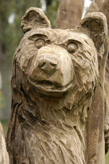 Bear carved from dead tree trunk Ridgway,Co