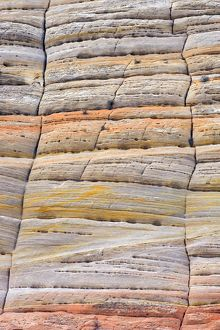 Checkerboard Mesa patterns, Zion National Park, Utah, USA