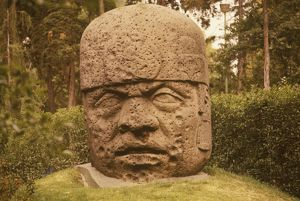 Colossal Head from Tres Zapotes, Stone Olmec, close up, Mexican N. Museum of Anthropology