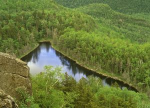 Giant Mountain Washbowl, Essex Co., Spring, Adirondacks, NY, New York