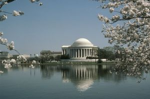 Jefferson Memorial & Cherry Blossoms, Washington D.C.'