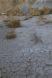 Mud Cracks in Desert Moonscape near Page, AZ, Arizona