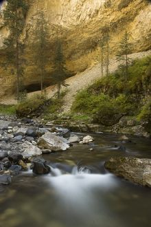 Pebble Creek, with flowing water, Yellowstone NP, Montana, USA