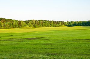 Pharr Mounds, prehistoric indian mounds, Natchez Trace Parkway, MS Mississipi