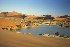 Temporary Lake in Sossusvlei after heavy rains Namibia