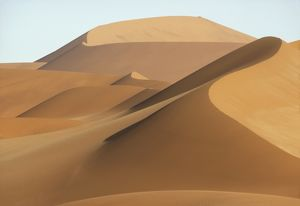 Towering Dunes Create Parabolas of Shady Light Namib Desert, Namibia