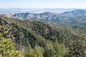 View of New Mexico along Pinery Canyon Rd., between Chiricahua National Monument