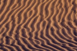 Wind patterns in sand at sunset, Coral Pink Sand Dunes State Park, near Kanab