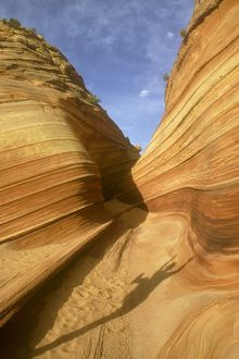 Windblown patterns in Navajo