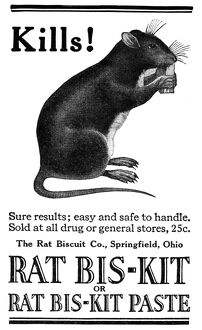 AD: RAT POISON, 1922. American advertisement for the Rat Biscuit Company, 1922
