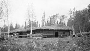 ALASKA: LOG CABIN. A log house with a thatched roof on a farm in Fairbanks, Alaska