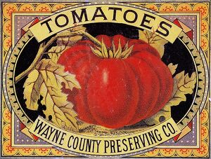 vintage ads/american label featuring tomatoes wayne county