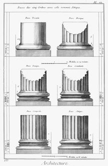 ARCHITECTURE: COLUMNS. Diagram of various orders of classical columns. Engraving