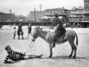 ATLANTIC CITY: DONKEY. A young woman on the back of a donkey with a man, lying on the beach