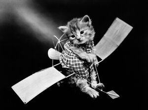 'The aviator' Photograph by Harry Whittier Frees, c1914.