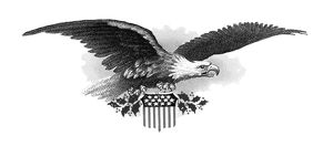 BALD EAGLE. Steel engraving and embossing, 19th century.