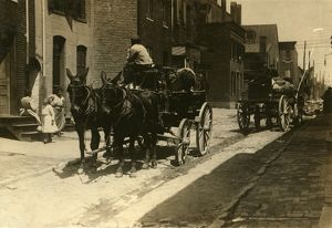 us cities/baltimore carriages 1910 horse drawn carriages