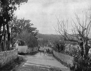 BERMUDA: PORT ROYAL, c1890. A street scene in Port Royal, Bermuda. Photograph, c1890