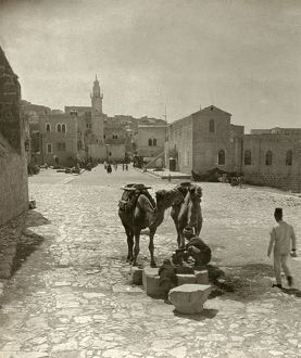 BETHLEHEM: STREET, c1911. Men with camels stop at a well in Bethlehem. Stereograph, c1911.