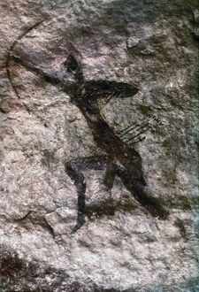 CAVE ART, ALGERIA. An archer. Rock painting from Tassili-des-Ajjer, Algeria.