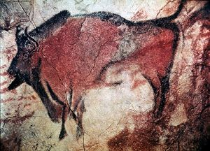 CAVE ART. Standing bull bison from Cave of Altamira, Santander, Spain, c10,000 B.C.