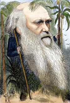 CHARLES ROBERT DARWIN (1809-1882). Caricature, 1872, by Frederick Waddy.